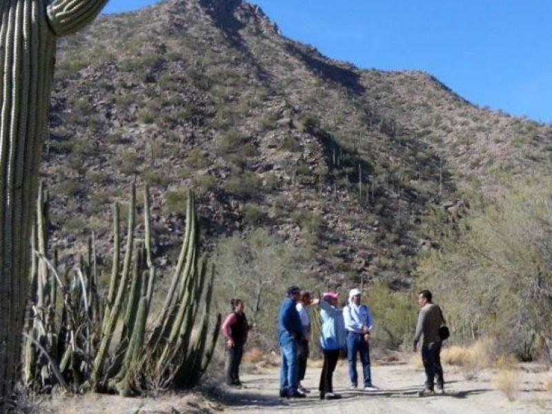 Comienzan rutas guiadas en playas y pueblos de Sonora