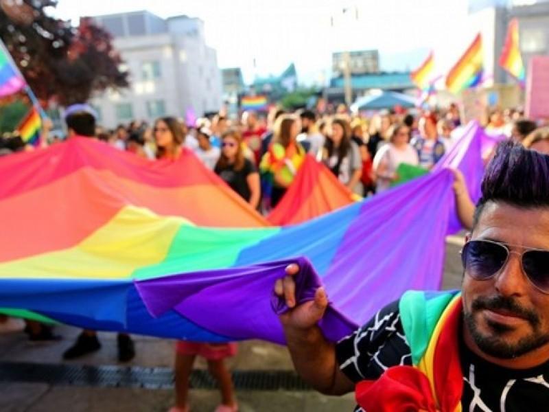 Comunidad gay elegirá a su topmodel