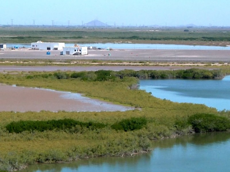 Comunidad Lázaro Cárdenas gana amparo contra planta de amoníaco.