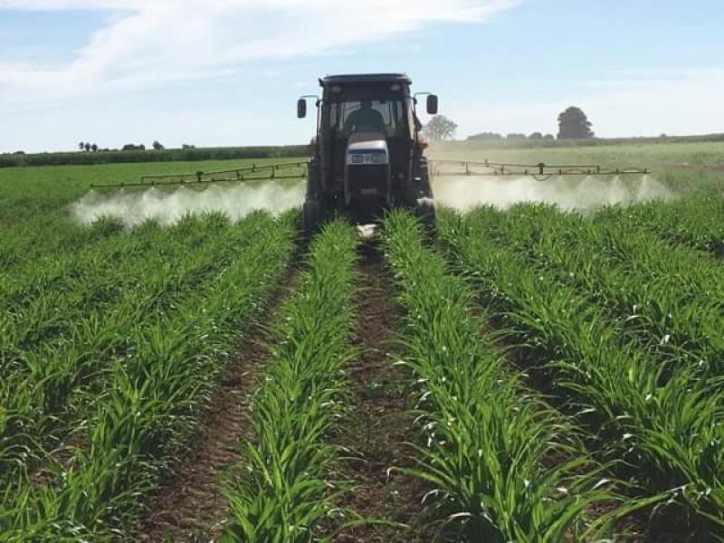 Con cautela se debe planear el ciclo agrícola 2021-2022