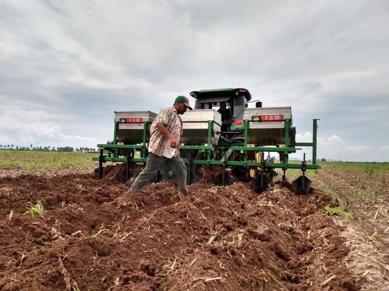 Con factores en contra inician productores ciclo agrícola