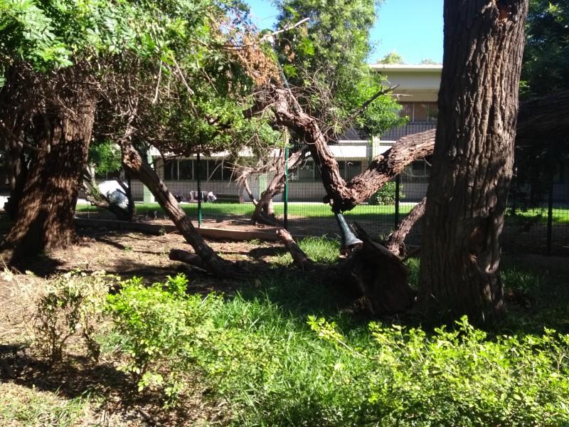 Con limitantes abre sus puertas Parque Sinaloa