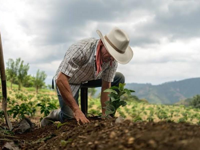 Con miscelánea fiscal 2022, productores pagarán más impuestos