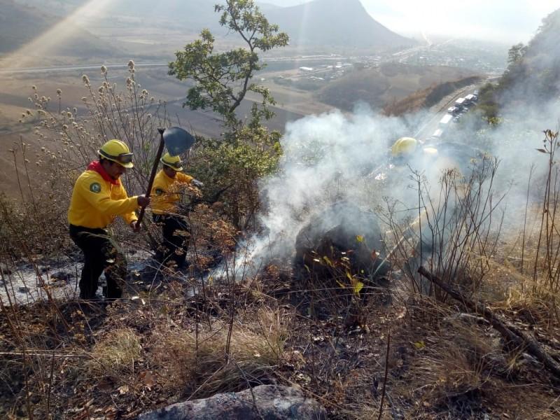 CONAFOR reporta 72 incendios forestales activos