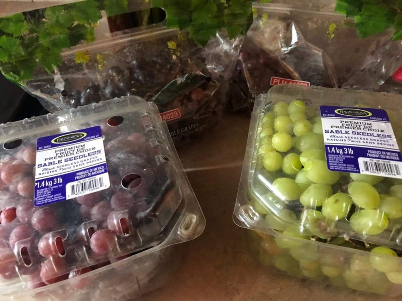 Concretan exportación de uva sonorense a Corea del Norte