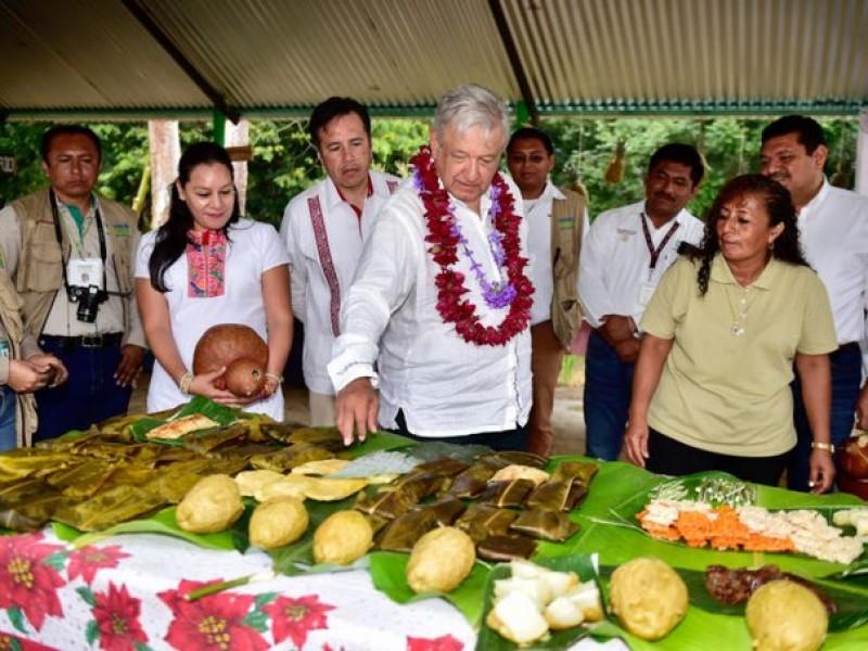 Consulta sobre Tren Maya se realiza sin incidentes
