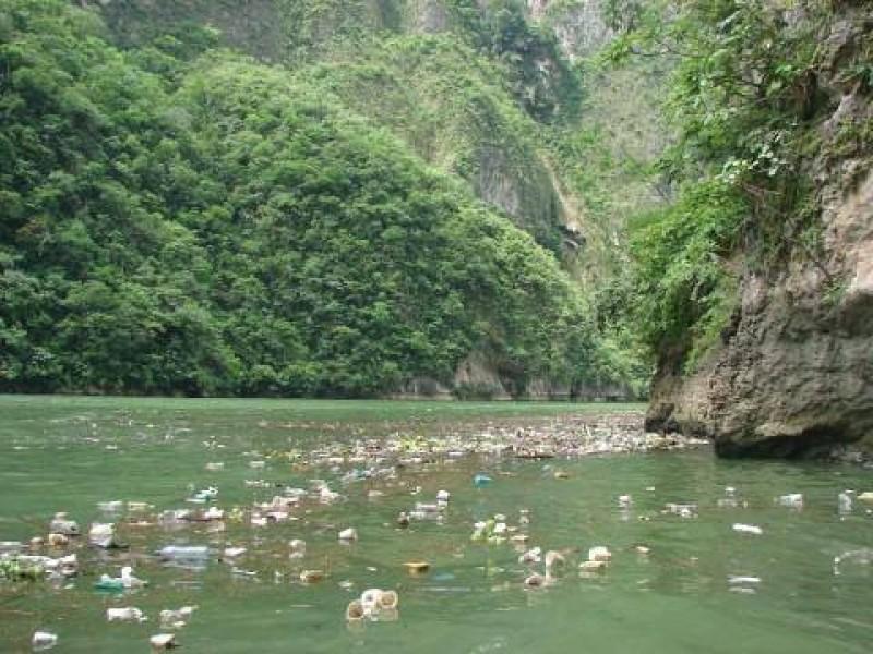 Contaminación afecta a fauna del Cañón del Sumidero