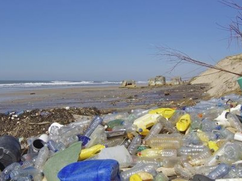 Contaminación por plástico, problemática que alarma a autoridades