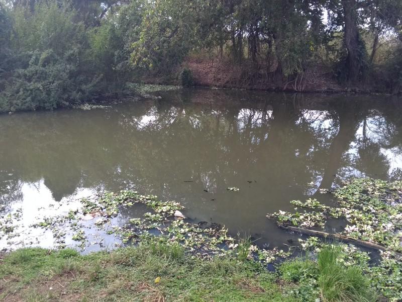 Contaminan aguas del río mayo