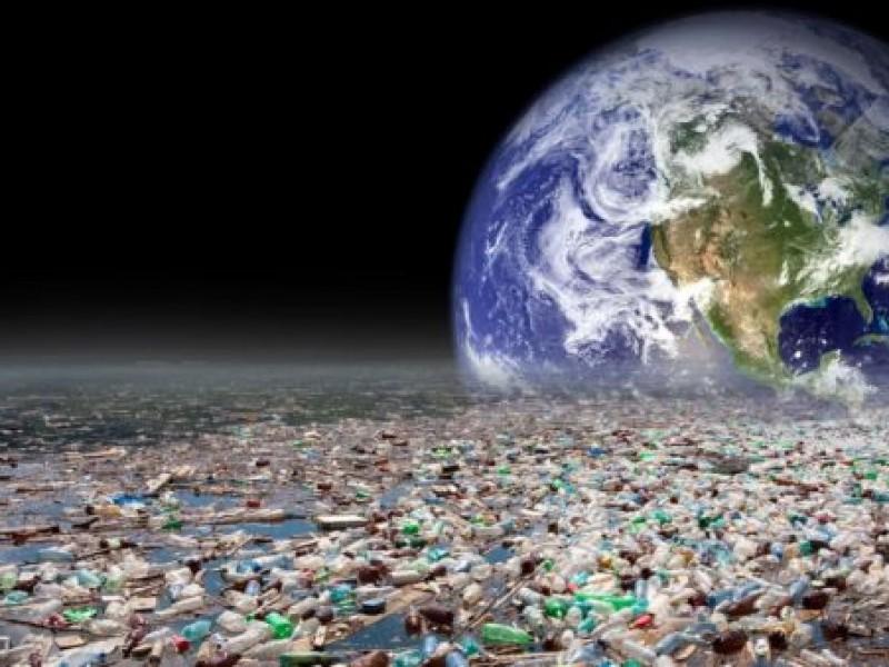 Contaminantes orgánicos en especies marinas