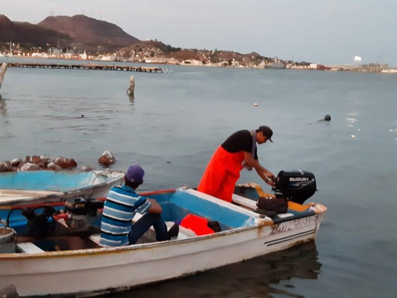 Contarán pescadores de Guaymas con seguro de vida