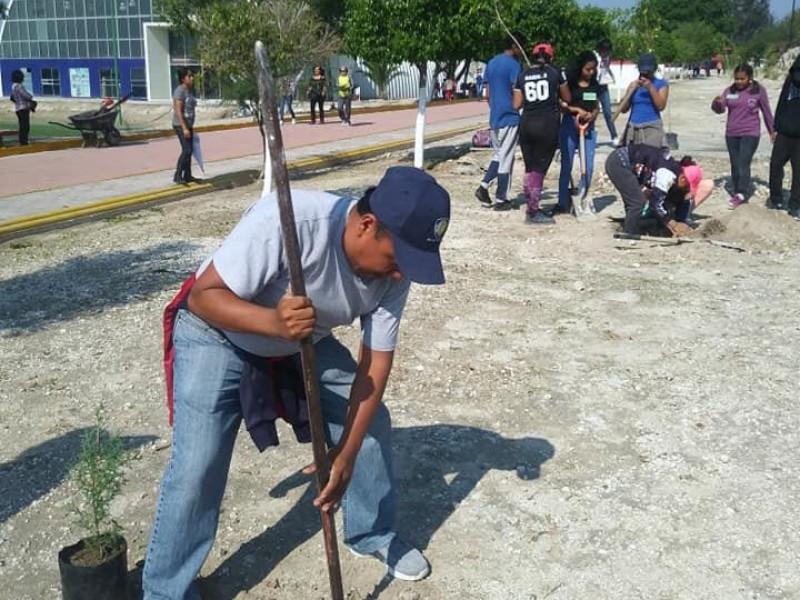 Contingencia obliga a reforestación en Tehuacán