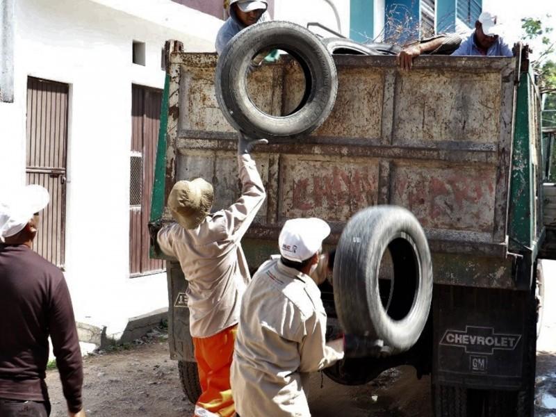 Continúa campaña contra el dengue en Tuxtla