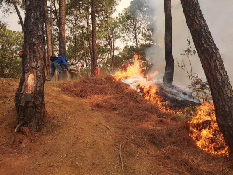 Continúa combate al incendio en cerro de la Cruz