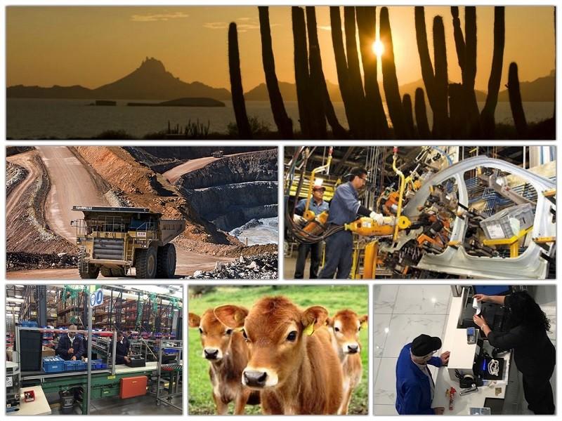 Continúa consolidándose la economía en Sonora