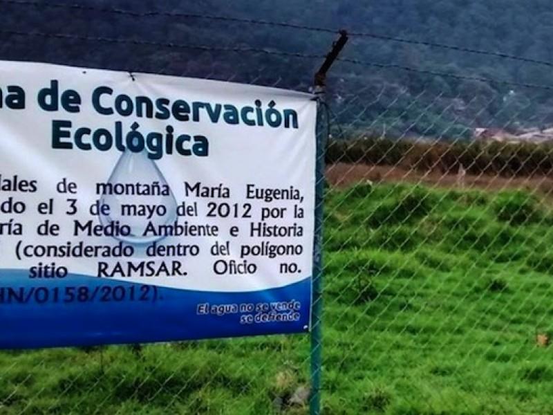 Continúa daño ambiental en humedales