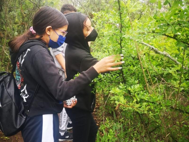 Continúa Semaccdet con jornada de voluntariado en Cerro Punhuato