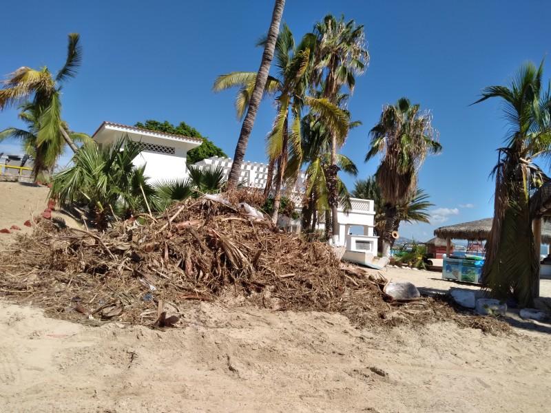 Continúa Zofemat limpiando las playas del municipio