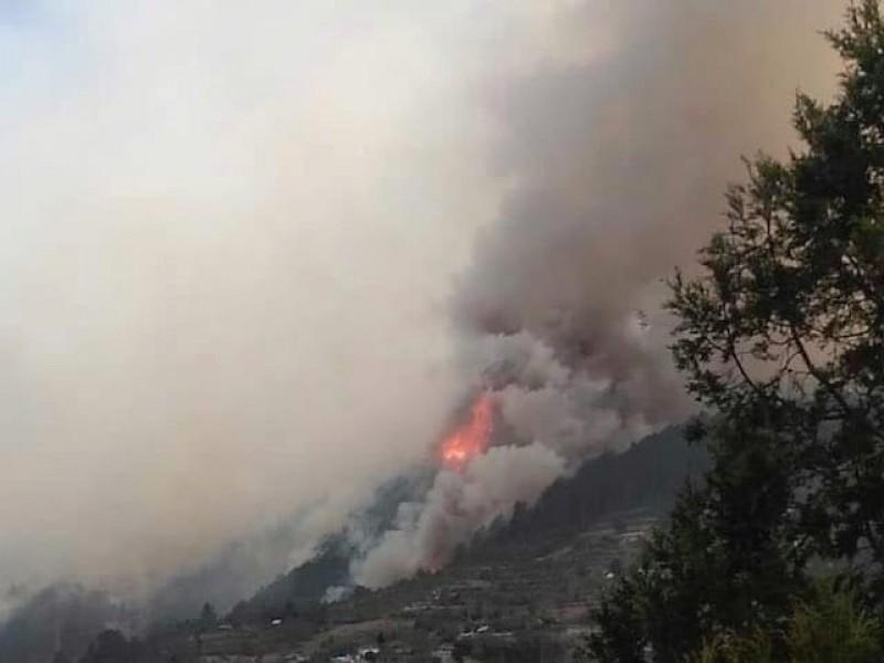 Continúan 3 incendios activos en Puebla de 305 reportados