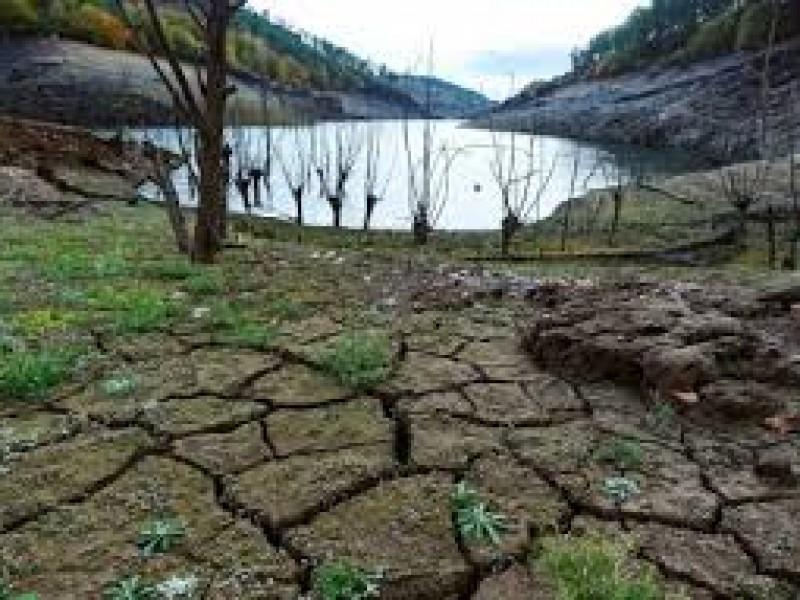 Continúan apoyos al campo en Colón por sequía