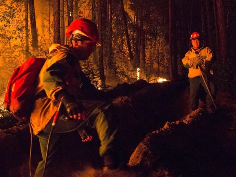 """Continúan incendios forestales en Siberia, """"Desaparece el sol"""""""