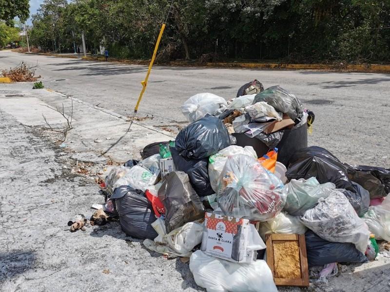 Continúan los reportes por problemas de basura