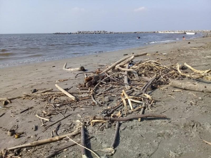 Continúan quejas por falta de limpieza en playas de Alvarado