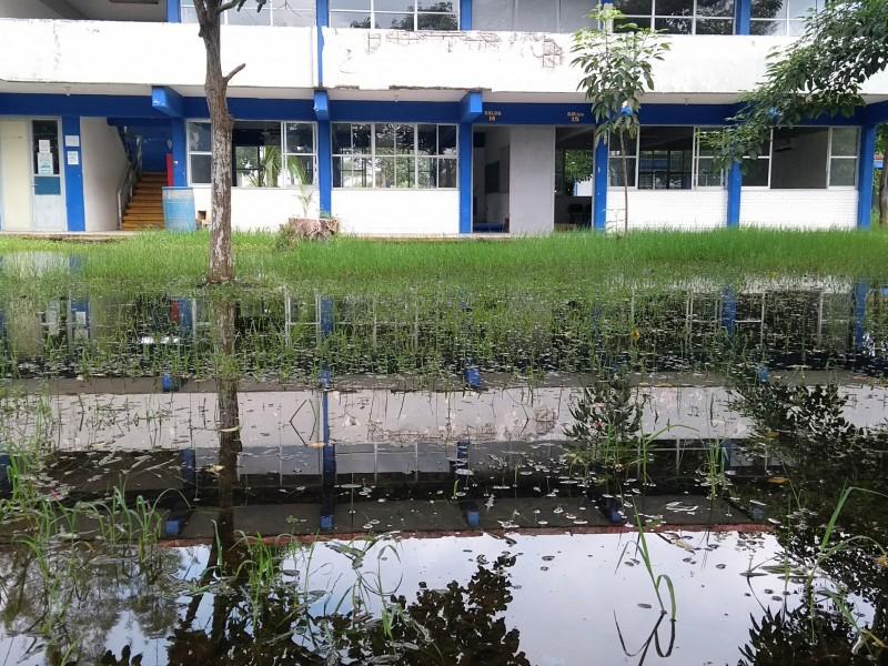 Continúan suspendidas clases en el CETIS 111