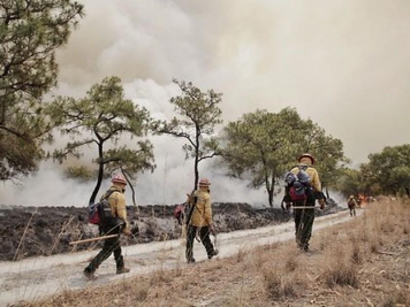 Fuego en La Primavera controlado al 80%