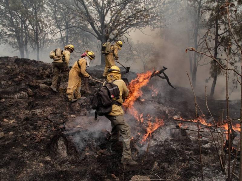 ¡Controlado! el incendio en Bosque La Primavera