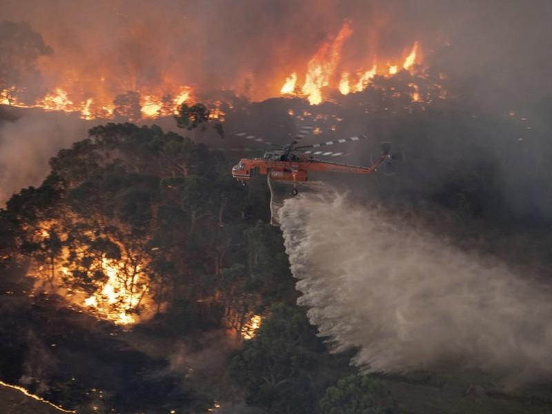 Controlan incendios forestales en Australia