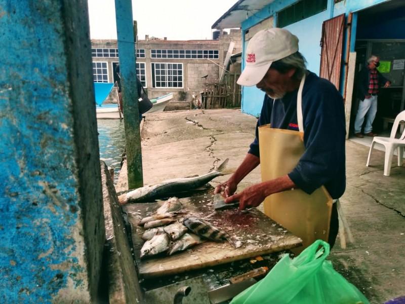 Cooperativas pesqueras reportan bajas ventas pese a Cuaresma