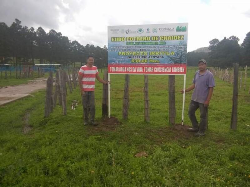 Corre riesgo convenio entre Conafor y Proyecto Irritila