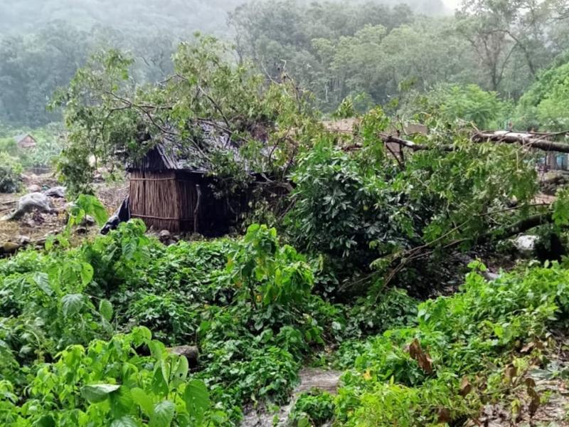 Cosechas familiares se vieron afectadas por fenómenos meteorológicos