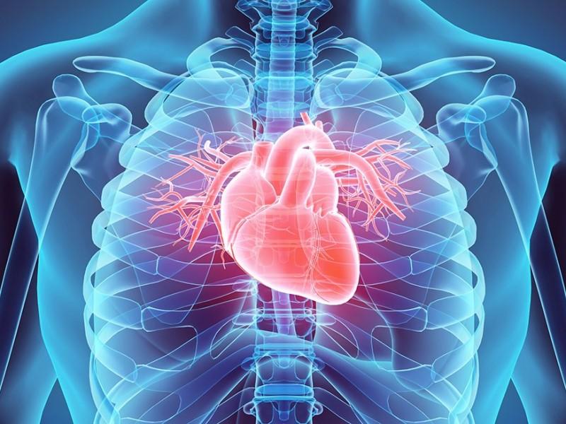 ¿Covid-19 afecta al corazón?