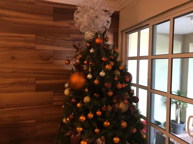 Covid-19 cambiará la forma de convivir en esta navidad