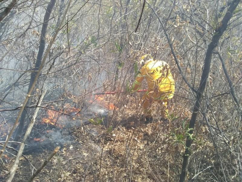 Cumple una semana incendio forestal en Ixtlahuacán