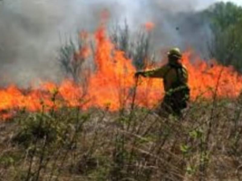 Cumplen nueve días de combate a incendio forestal en Chiapas