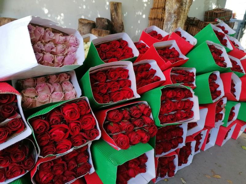 Dan a conocer precios oficiales de la flor