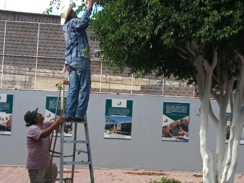 Dan mantenimiento a plazas públicas