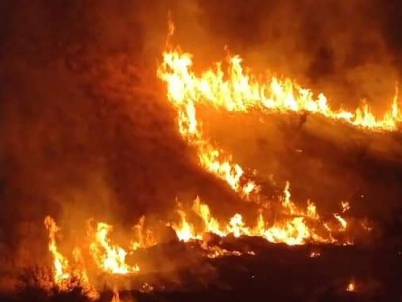 De nuevo se incendia el Cerro del Bachoco