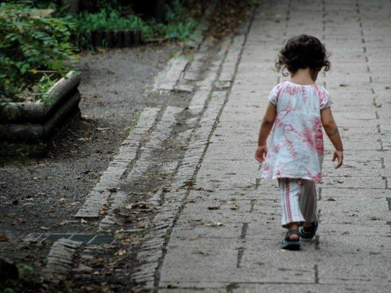 De octubre-Enero atienden 150 casos de abandono