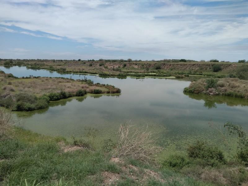 Declaran laguna Los Jagüeyes como área natural protegida municipal
