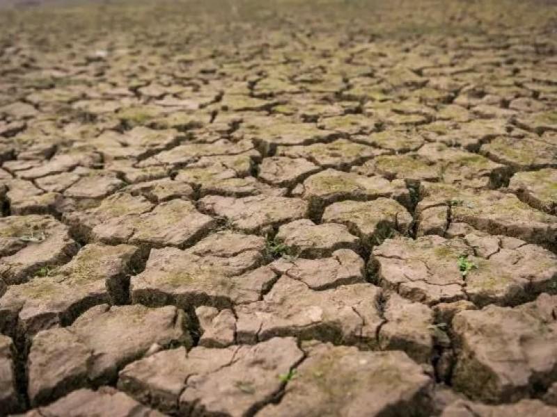 Declaratoria de emergencia por sequía extrema