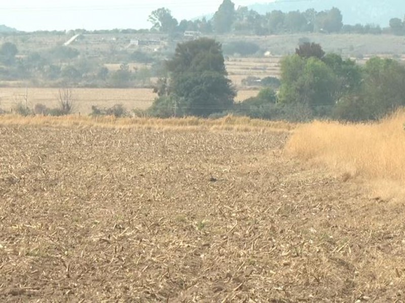 Declaratoria de sequía permitirá a Jalisco recibir apoyos del FONDEN