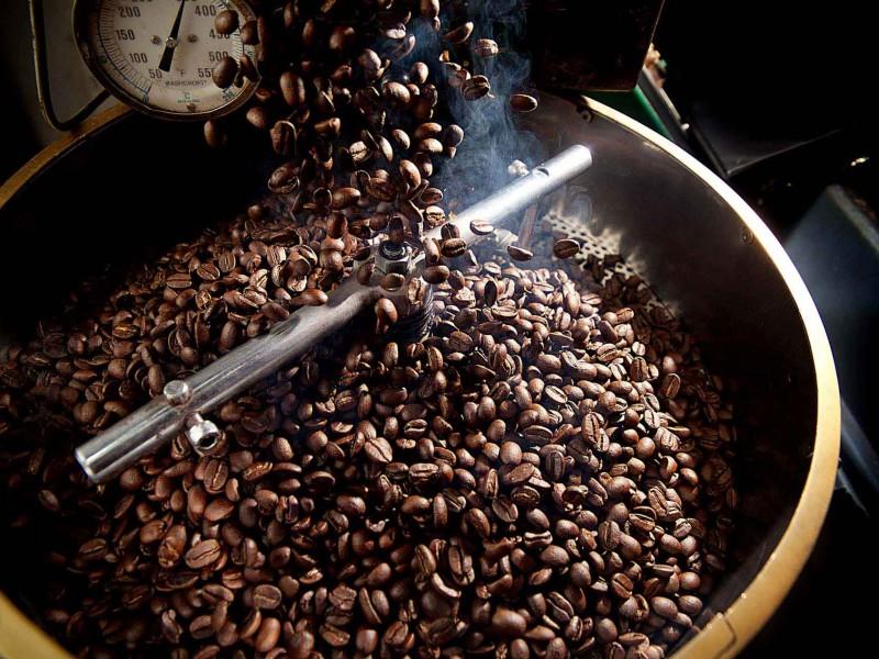Déficit en producción de café en Chiapas