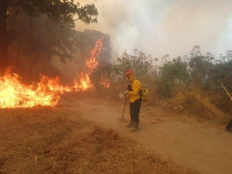 Deja familias afectadas ultimo incendio en La Primavera