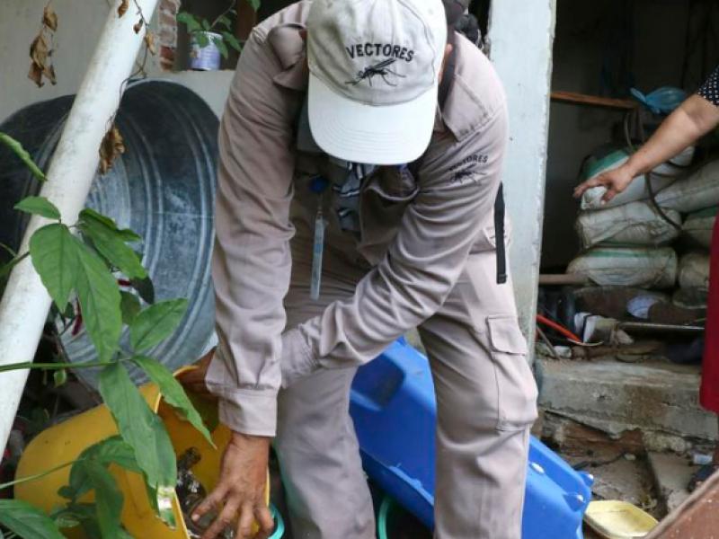 Dengue amenaza a familias en confinamiento