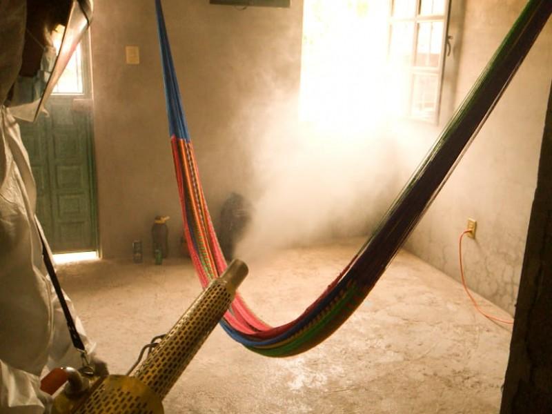 Dengue; otra enfermedad que no hay que olvidar en Oaxaca