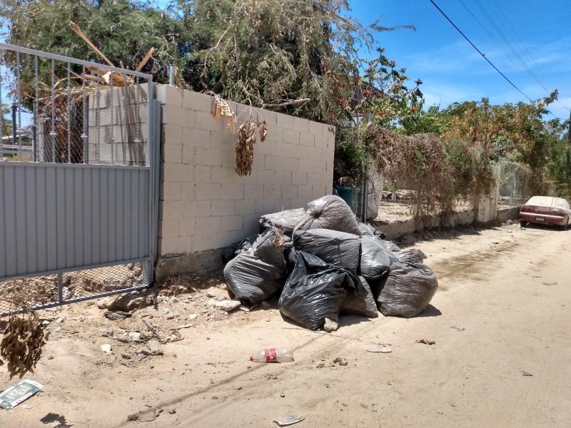 Denuncia ciudadana por falta de recolección de basura y baches